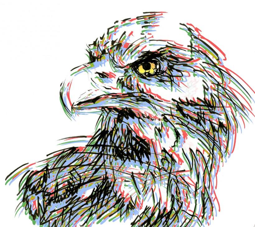 鷲メイン1